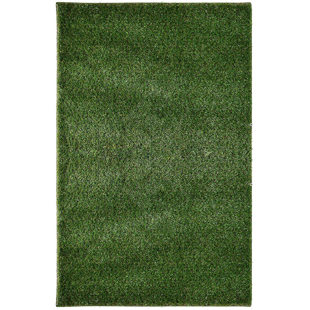 Lanart Rug Carpette, 8 pi x 10 pi, à poils long, rectangulaire, vert Grass
