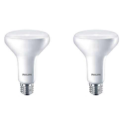 Philips 65W Equivalent Daylight (5000K) BR30 LED Light Bulb (2-Pack)