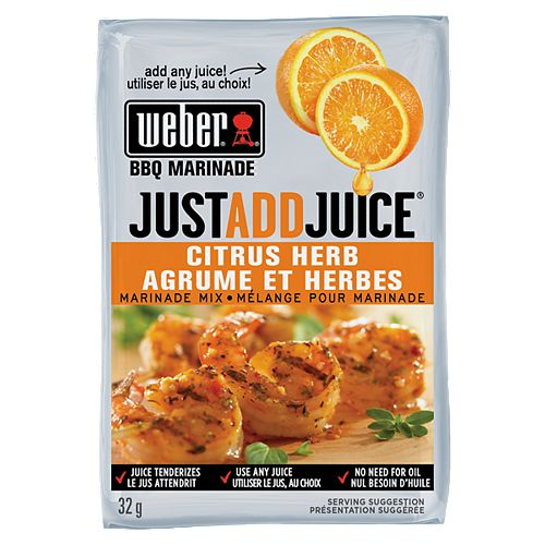 Just Add Juice 32g Citrus Herb Marinade Mix