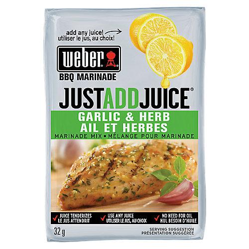 Just Add Juice 32g Garlic & Herb Marinade Mix