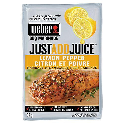 Just Add Juice 32g Lemon Pepper Marinade Mix