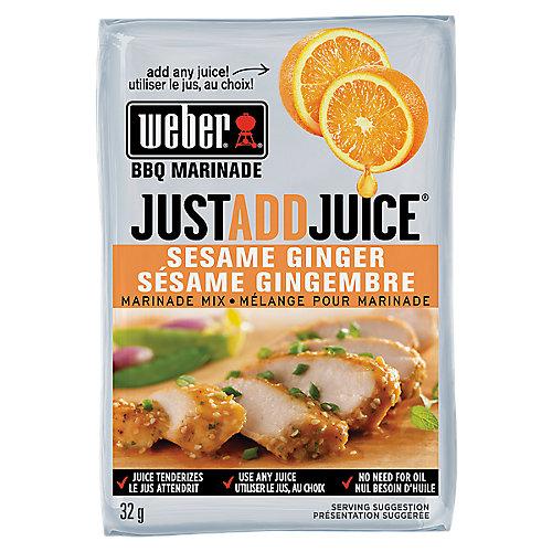 Just Add Juice 32g Sesame Ginger Marinade Mix