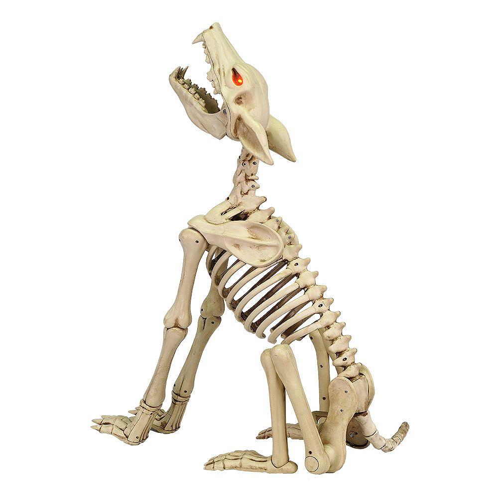Home Accents Squelette de loup émettant un hurlement, 2 pi 4 po