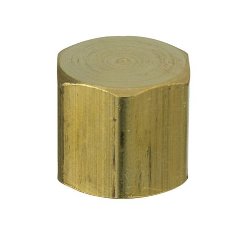 Sioux Chief 1/4 inch Brass FPT Cap