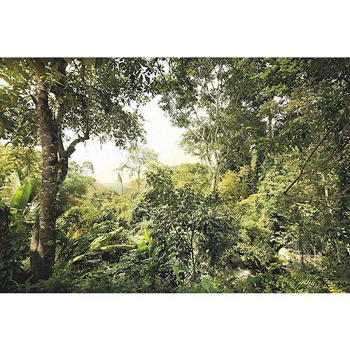 Photo Murale Wilderness
