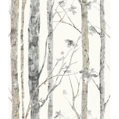 Papier peint adhésif bouleau