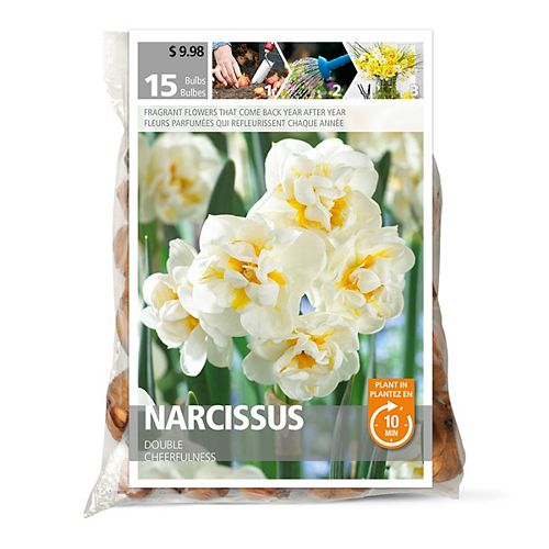 Narcissus Cheerfulness Flower Bulbs (15-Pack)