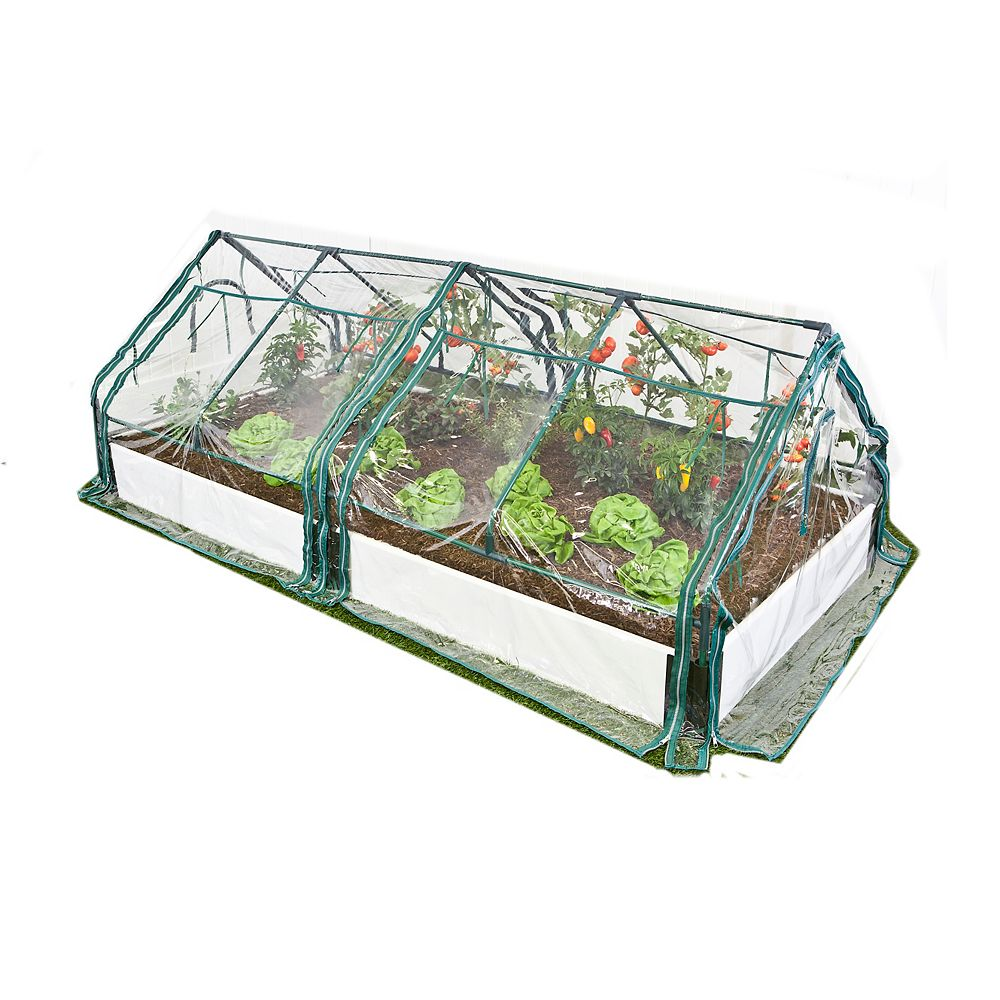 Frame It All 1-inch 4 ft. x 8 ft. 1-Level Raised Garden in White with 2 PVC Greenhouse