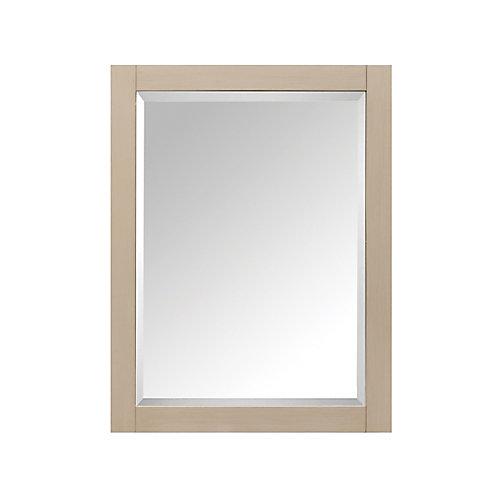 24 Inch Mirror Cabinet For Delano In Taupe Glaze Finish