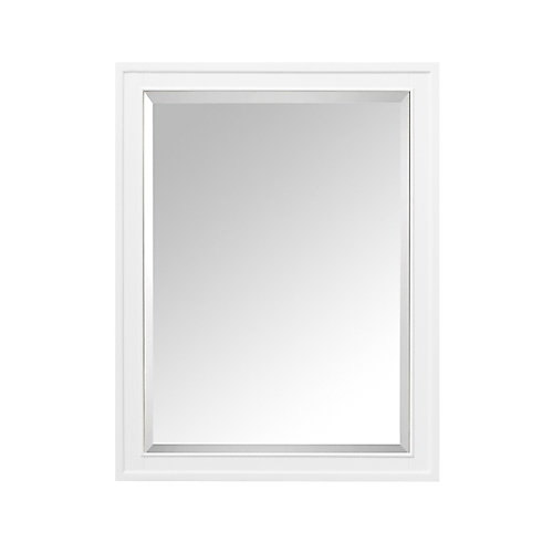 Madison 24 Inch Mirror Cabinet In White Finish
