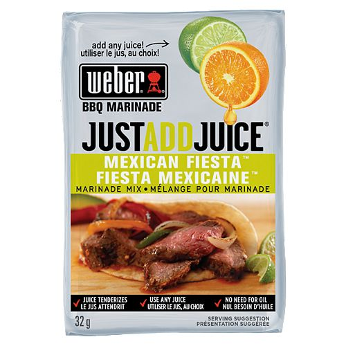 Just Add Juice 32g Mexican Fiesta Marinade Mix