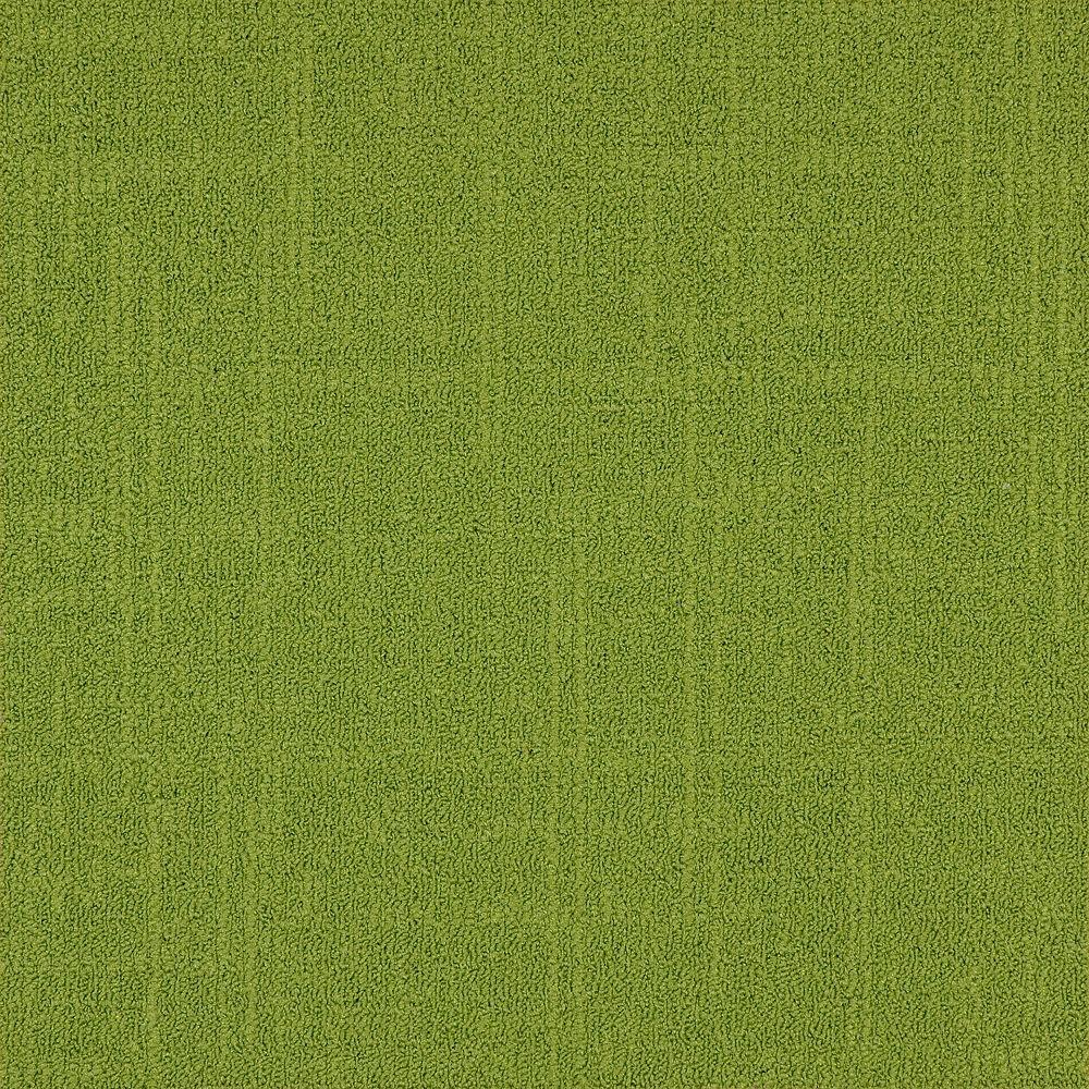 Astella Carreau de tapis-Reed coleur Lime (21.53 SF)