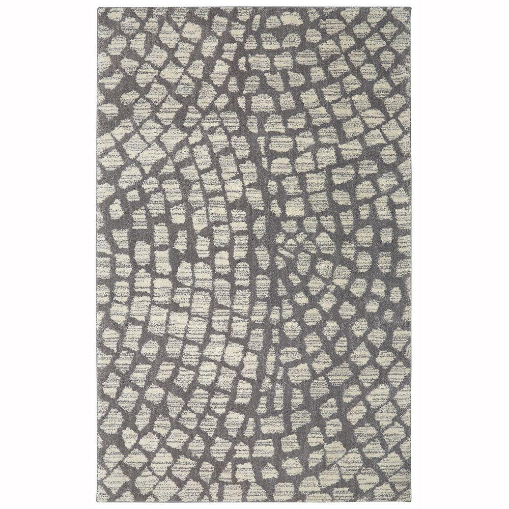 Home Decorators Collection Cohassett Gris 3,05x4,26 (120x168) carpette