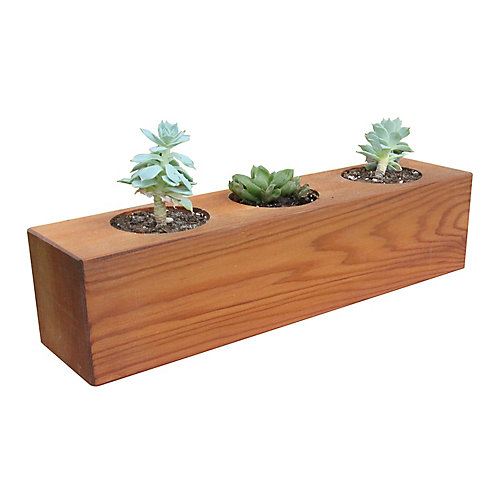Jardinière à 3 trous pour plantes succulentes 10cm x 10cm x 40cm
