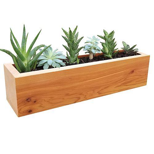 Jardinière rectangulaire pour succulentes - 10cm x 10cm x 40cm
