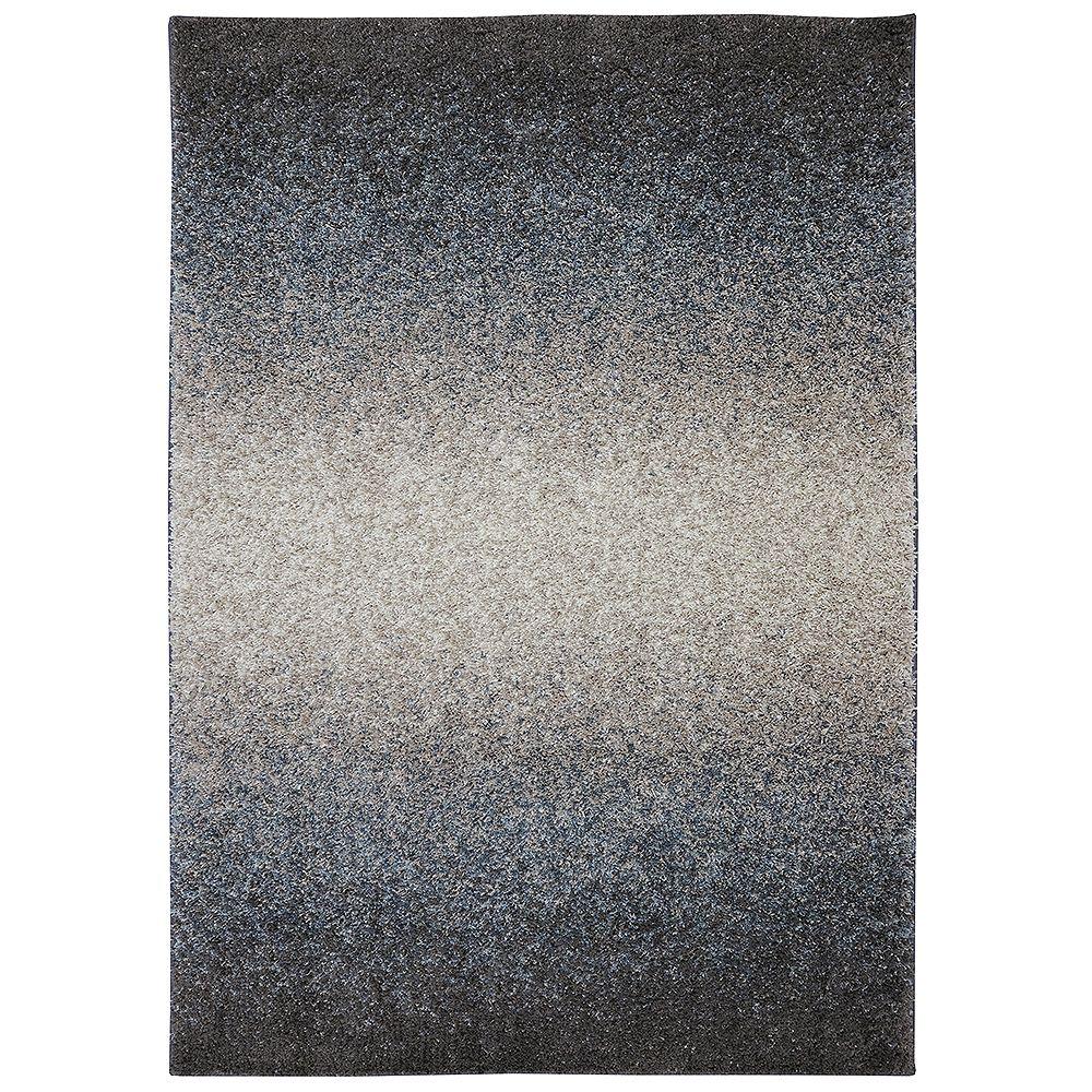 Home Decorators Collection Chester Chocolat 3,05x4,26 (120x168) carpette