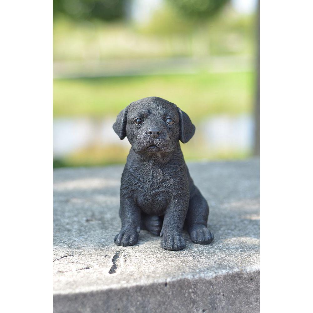 Hi-Line Gift Chiot Labrador noir.