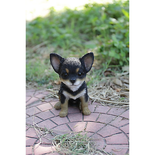 Black and Brown Chihuahua Puppy Statue