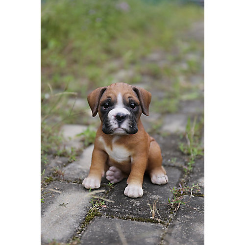Boxer Puppy Statue