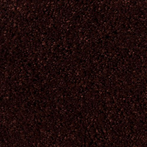 True Desire - Bois brûlé - Tapis vendu au pied carré
