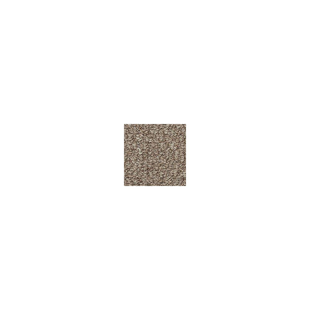 Beaulieu Canada Entrancing - Bistre Brown Carpet - Per Sq. Feet