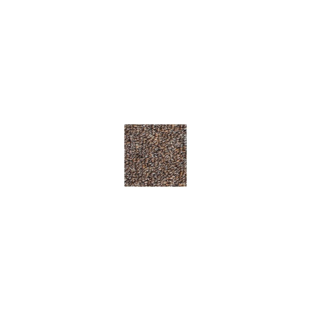 Beaulieu Canada Oscillation 20 - Mink Carpet - Per Sq. Feet