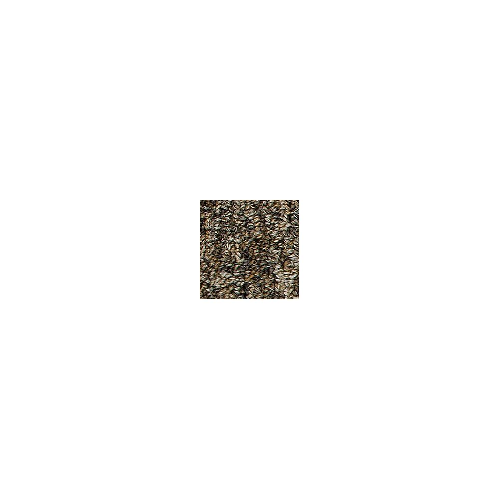 Beaulieu Canada Oscillation 28 - Marsh Grass Carpet - Per Sq. Feet