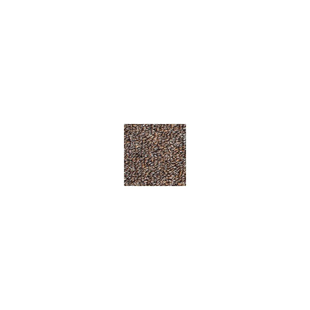 Beaulieu Canada Oscillation 28 - Mink Carpet - Per Sq. Feet
