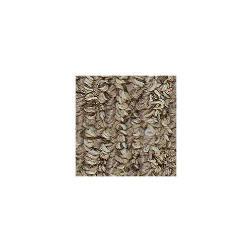 Beaulieu Canada Dunkirk - Gaucho Brown Carpet - Per Sq. Feet