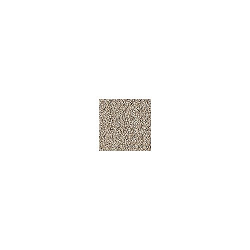 Beaulieu Canada Dardanelle - Bistre Brown Carpet - Per Sq. Feet