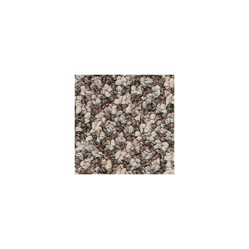 Beaulieu Canada Integrity 20 - Indian Beige Carpet - Per Sq. Feet
