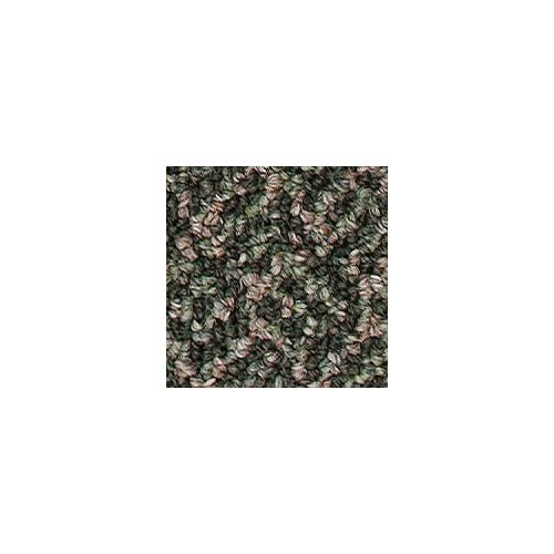 Beaulieu Canada Integrity 20 - De Medici Green Carpet - Per Sq. Feet