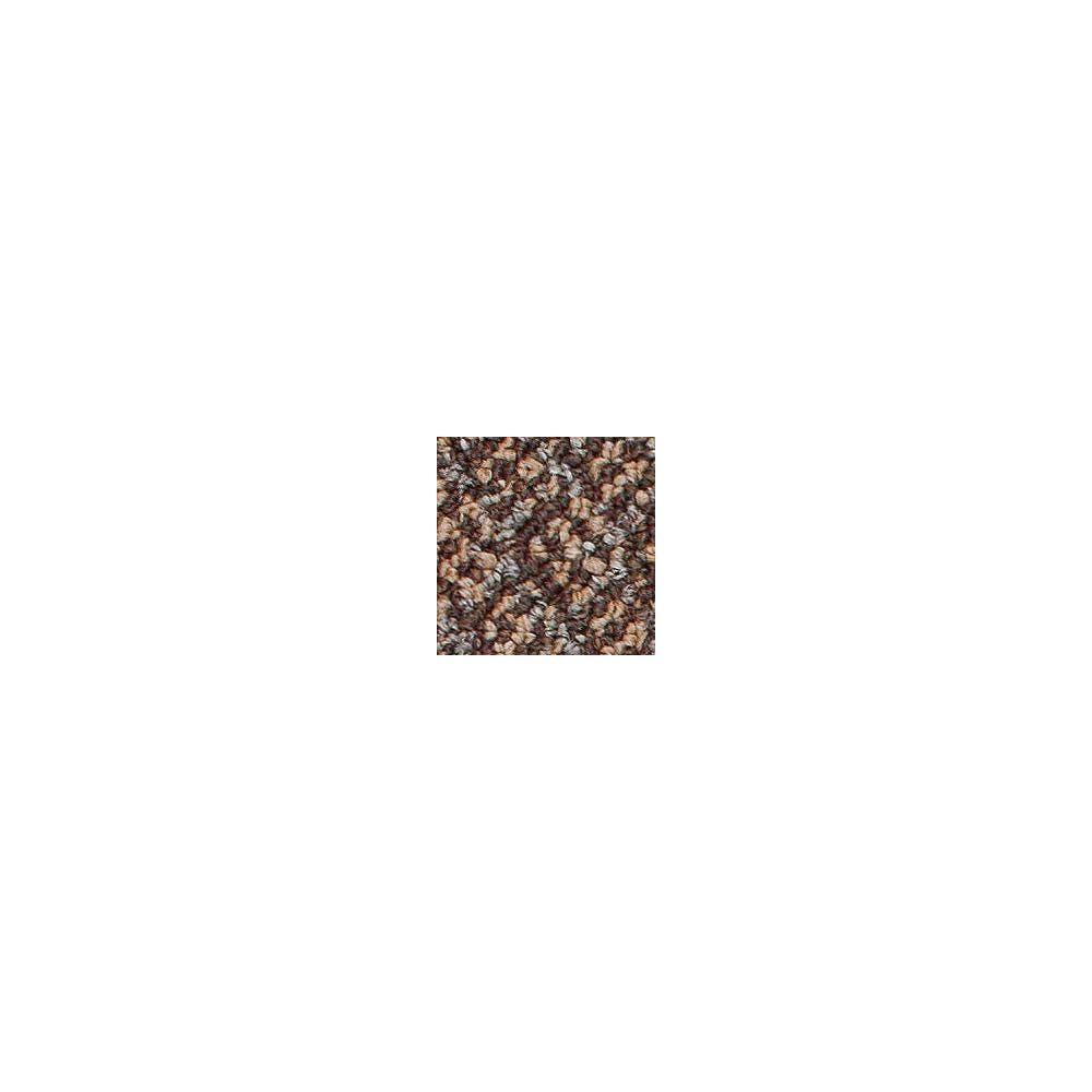Beaulieu Canada Integrity 20 - Taffy Brown Carpet - Per Sq. Feet