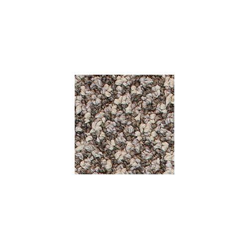 Beaulieu Canada Integrity 28 - Indian Beige Carpet - Per Sq. Feet