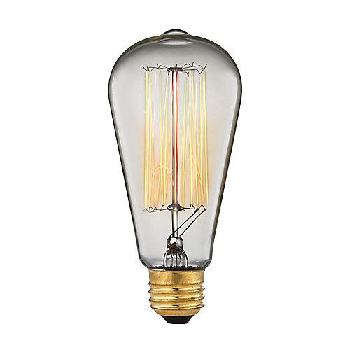 Ampoule à incandescence à culot moyen style vintage A19 Ogden, 60 W