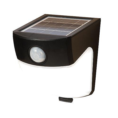 All-Pro LED Solar Motion Light
