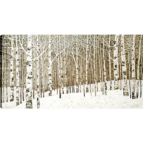 """30"""" H x 60"""" W Hand Panted, 'Birch Tree Oil' by Tina O. Wall Art on Wrapped Canvas"""