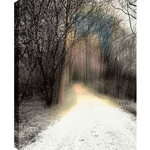 The Path' Photographic Print on Wrapped Canvas
