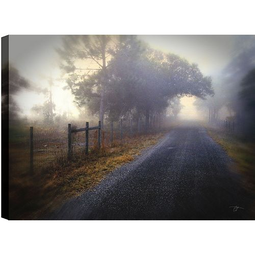Foggy Path' Photographic Print on Wrapped Canvas