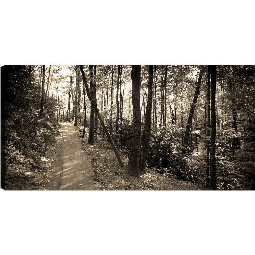Art Maison Canada Hillside' épreuve photographique sur toile enveloppé