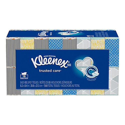 Everyday Facial Tissues (16-Pack, 85 Tissues per Box)