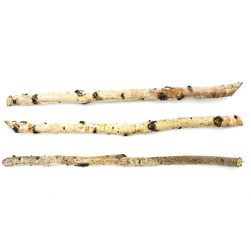 Natural White Birch Pole (3-Pack)