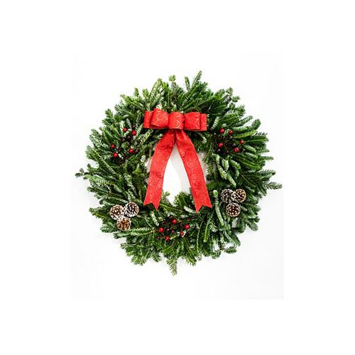 Brookdale Treeland Nurseries 28-inch Decorated Christmas Wreath with Red Bow and Berries