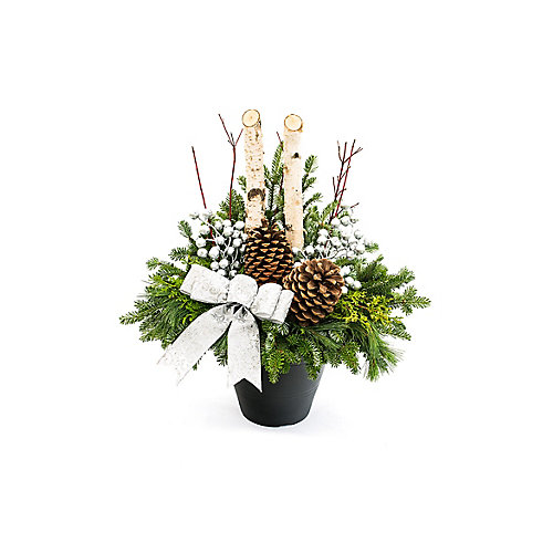 Large Birch Outdoor Arrangement - Silver