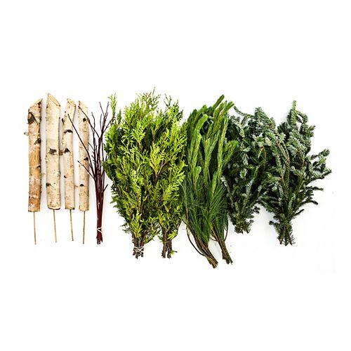 Brookdale Treeland Nurseries Trousse de verdures persistantes pour bricoleur (permet de réaliser 2 arrangements pour urne)
