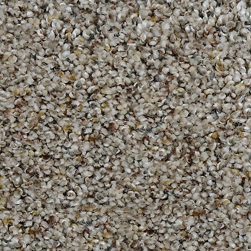 Beach Club I Drysdale 12 ft. x Custom Length Textured Carpet