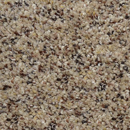 Beach Club I Coy 12 ft. x Custom Length Textured Carpet