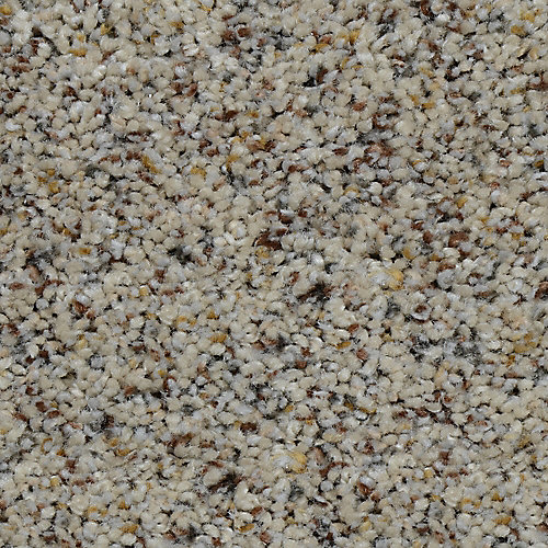 Beach Club I Gavin 12 ft. x Custom Length Textured Carpet