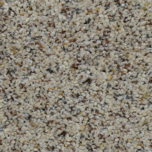 Beach Club I Gavin 12 ft. x Custom Length Textured Carpet