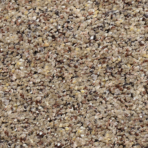 Beach Club I Kincaid 12 ft. x Custom Length Textured Carpet